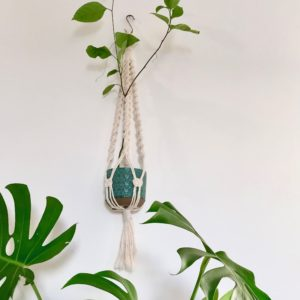 Tutoriel Suspension en Macramé – chelonoidis CARBONARIA