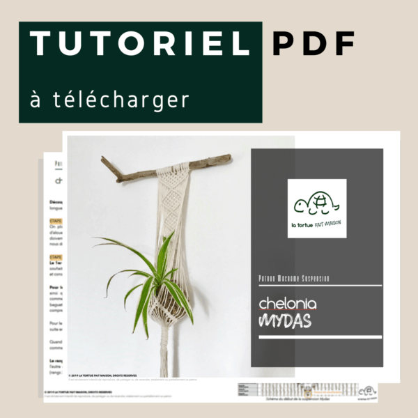 tutoriel suspension pour plante