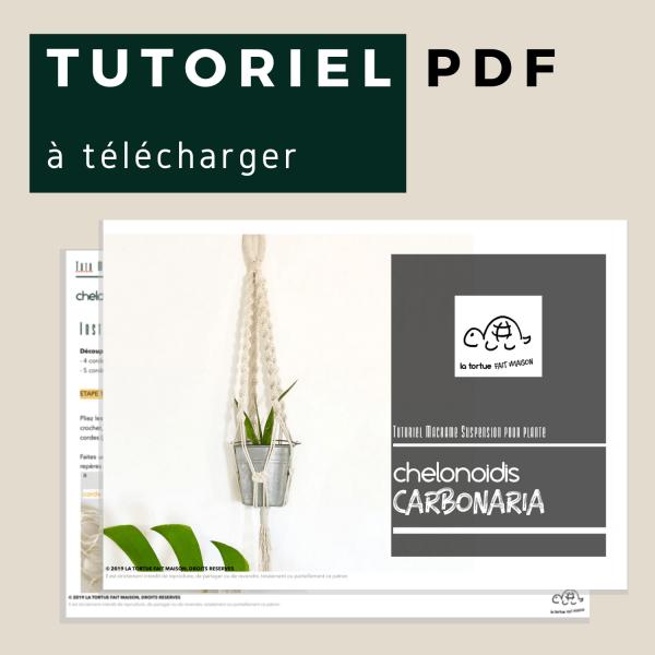 tutoriel suspension pour plante